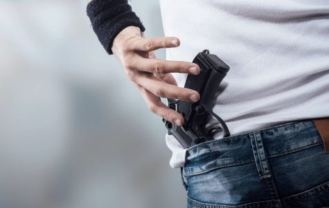 Voices in The Halls: Should we have stricter gun control in the United States?