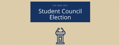 Student Council Candidates for 2020-2021 School Year (Contested Positions)